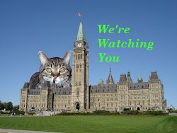 The Bear Cat's musings: Canada: Democracy under siege